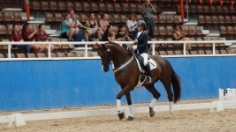 masters of dressage original 415